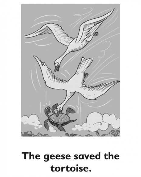 Two geese carry a turtle through the sky.